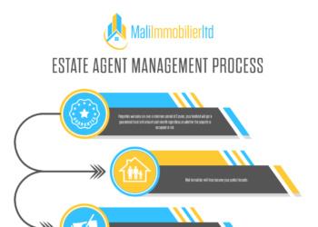 Mali Immobilier – Flowchart Design